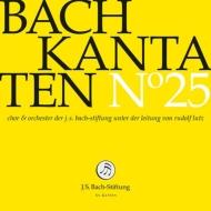 カンタータ集 第25集〜第29番、第91番、第175番 ルドルフ・ルッツ&バッハ財団管弦楽団