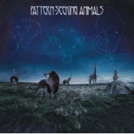 Pattern-seeking Animals (アナログレコード)