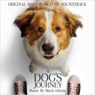 Dog's Journey