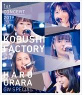Magnolia Factory First Concert 2019 Haru Urara -GW Special-