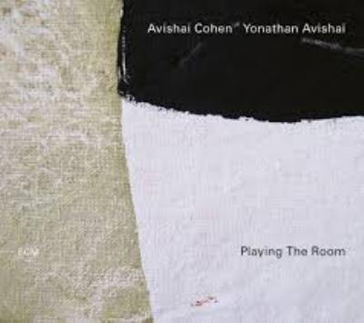 Playing The Room (180グラム重量盤レコード)