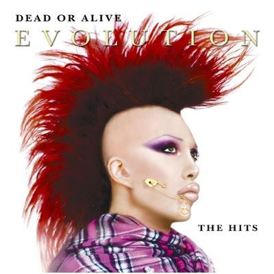 Evolution: The Best Of Dead Or Alive