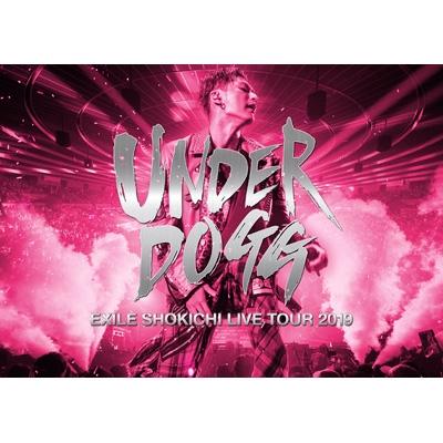 EXILE SHOKICHI LIVE TOUR 2019 UNDERDOGG