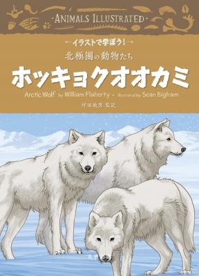 ホッキョクオオカミ イラストで学ぼう!北極圏の動物たち