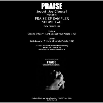 Praise Ep Sampler Two (12インチシングルレコード)