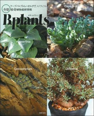 ビザールプランツ 冬型珍奇植物最新情報