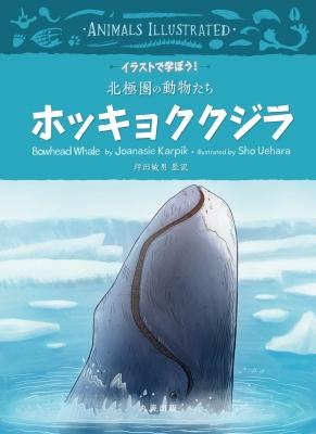 イラストで学ぼう!北極圏の動物たち ホッキョククジラ