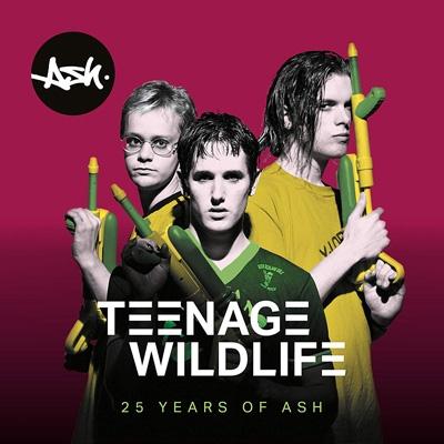 Teenage Worldlife: 25 Years Of Ash