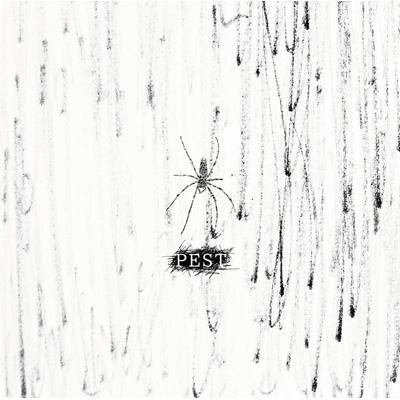 PEST 【Atype 初回限定盤】(+DVD)