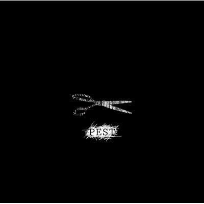 PEST 【Ctype】