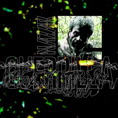 Guerrilla (2枚組アナログレコード)