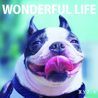 WONDERFUL LIFE 【豪華盤】(+DVD)