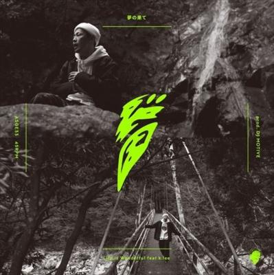 夢の果て/ Life Is Wonderful feat k.lee (7インチシングルレコード)