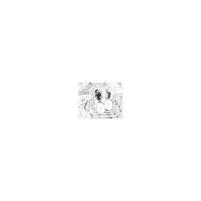 トワイライト 【完全枚数限定生産】(アナログレコード)