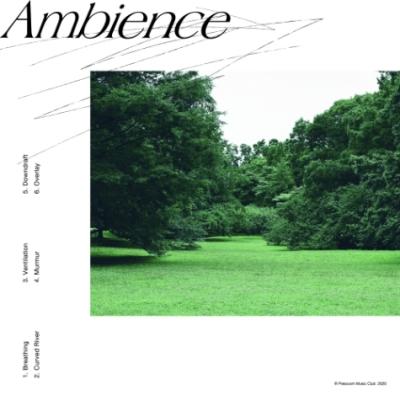 Ambience (アナログレコード)
