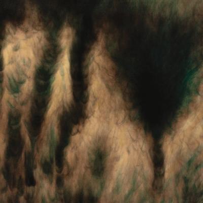 Lamentations (カラーヴァイナル仕様/2枚組アナログレコード)
