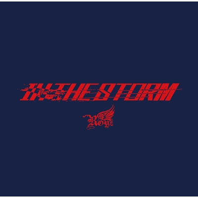 IN THE STORM <初回限定盤:Btype>(+DVD)