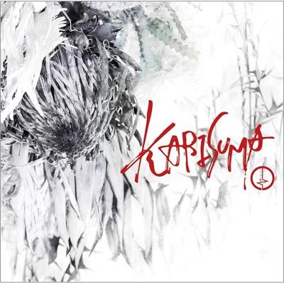 KARISUMA <初回限定盤/Btype>(+DVD)