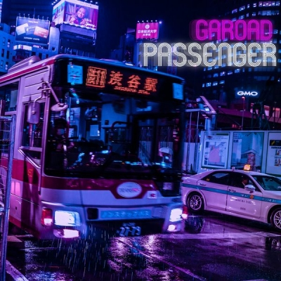 Passenger (アナログレコード)