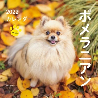 2022年 カレンダー ポメラニアン 誠文堂新光社カレンダー