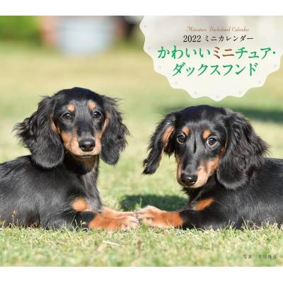 2022年 カレンダー かわいいミニチュア・ダックスフンド 誠文堂新光社カレンダー