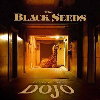 Into The Dojo