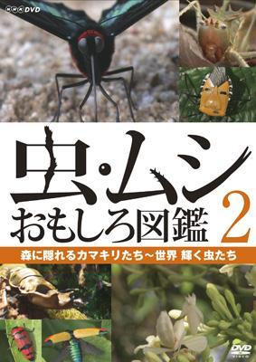 虫・ムシ おもしろ図鑑 2 森に隠れるカマキリたち〜世界 輝く虫たち