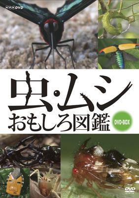 虫・ムシ おもしろ図鑑 DVDセット