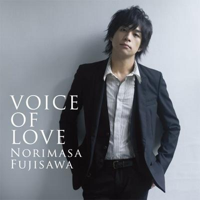 VOICE OF LOVE ~愛の力~ : 藤澤ノリマサ | HMV&BOOKS online - MUCD-8008