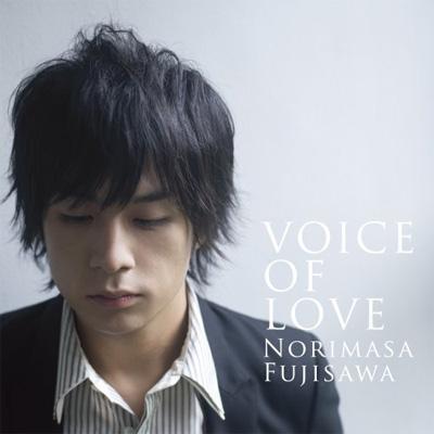 VOICE OF LOVE ~愛の力~ : 藤澤ノリマサ | HMV&BOOKS online - MUCD-1193