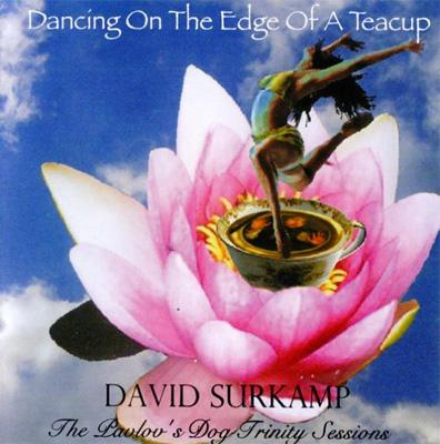 Dancing On The Edge Of A Teacup: 桃源郷の舞踏