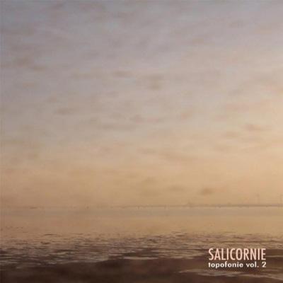Salicornie: Topofonie 2