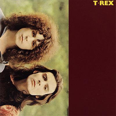 T Rex +9