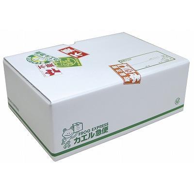 【初回限定生産】踊る大捜査線 THE MOVIE 3 カエル急便おまとめパック<DVD>