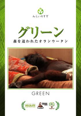 グリーン 森を追われたオランウータン