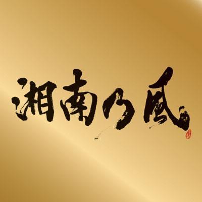 """湘南乃風 〜Single Best〜表BEST""""金""""盤 (CD+MIX CD)【通常盤】"""