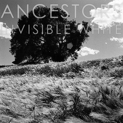 Invisible White