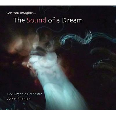Go: Organic Orchestra -Can You Imagine The Sound