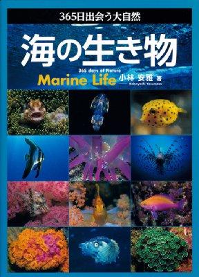 365日出会う大自然 海の生き物