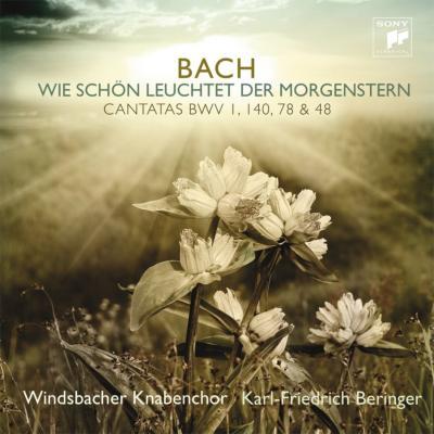 カンタータ第140番、第1番、第48番、第78番 ベリンガー&ヴィンツバッハ少年合唱団、ドイツ・カンマー=ヴィルトゥオーゼン・ベルリン、他