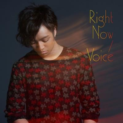 Right Now/Voice