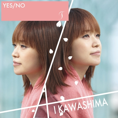 YES/No/ T