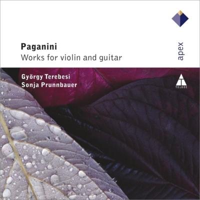 ヴァイオリンとギターのための作品集 テレペシ、プルンバウアー(2CD)