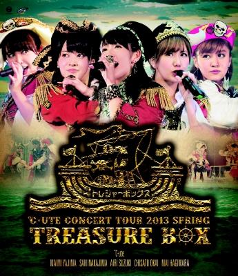 ℃-uteコンサートツアー2013春〜トレジャーボックス〜