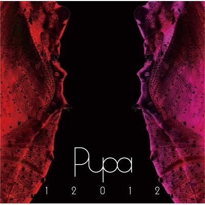 12012 BEST ALBUM 「PUPA」2007...