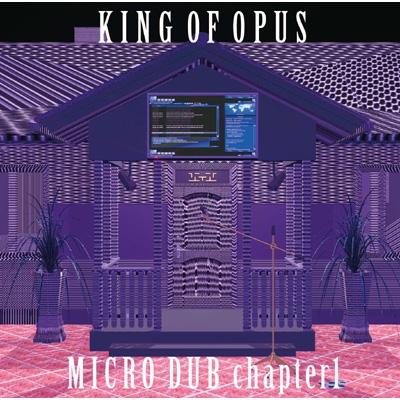 MICRO DUB chapter1
