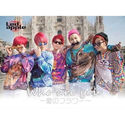 Who are you 〜愛のフラワー〜【限定盤】 (CD+DVD)