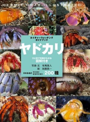 ヤドカリ ひと目で特徴がわかる図解付き 日本各地のヤドカリ・オカヤドカリ200種