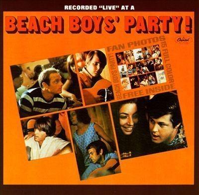 Beach Boys' Party! (200g)