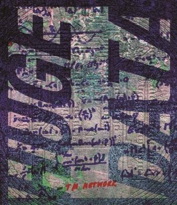 TM NETWORK 30th 1984〜QUIT30 HUGE DATA (Blu-ray)